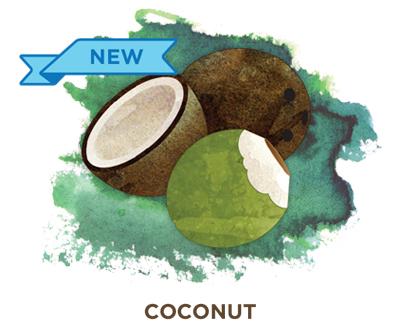 Coconut Bevi Cooler water flavor